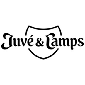 Bodega Juvé & Camps